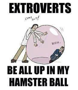 We don't like our hamster ball invaded. via INFP Think Tank