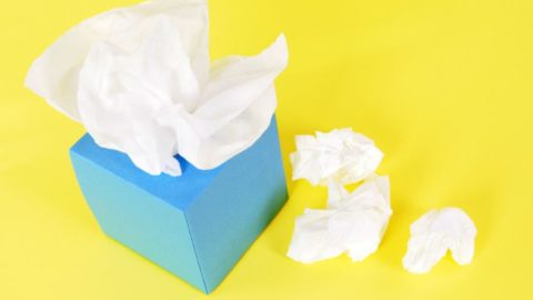 Tips For Preventing The Flu and Common Cold